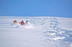 Skiing Turkey - volume 2